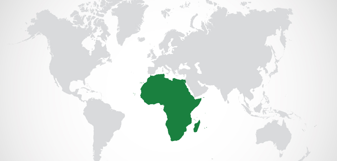 Africa – Portugal Business On the Way